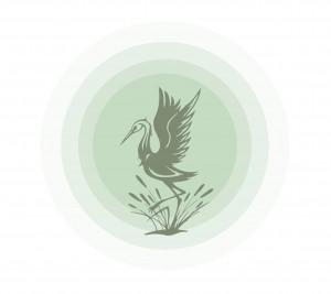 Jade Sun Logo (BirdSun)